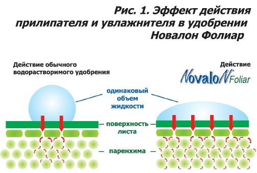 Эффект действия прилипателя и увлажнителя в удобрении Новалон Фолиар